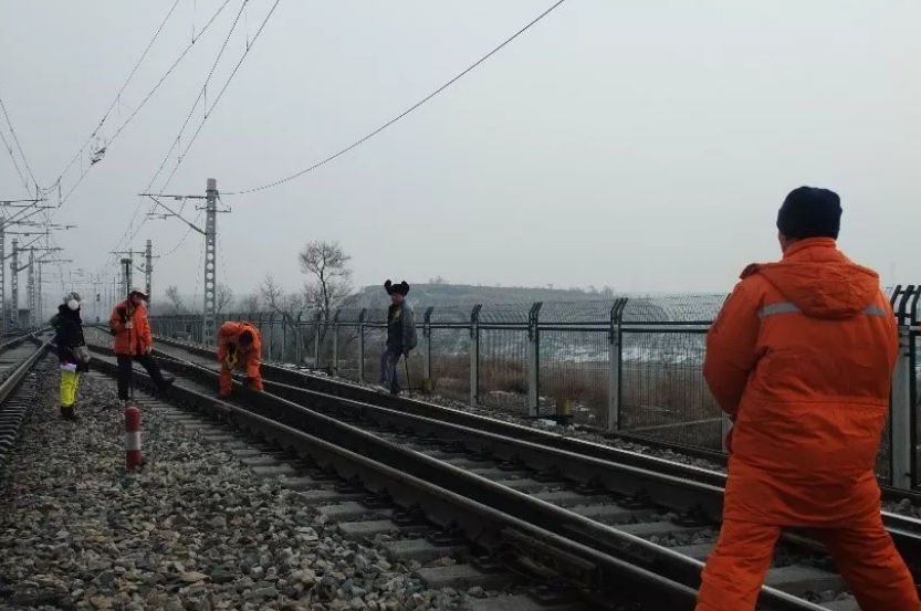 徕卡移动扫描系统在铁路复测中的应用